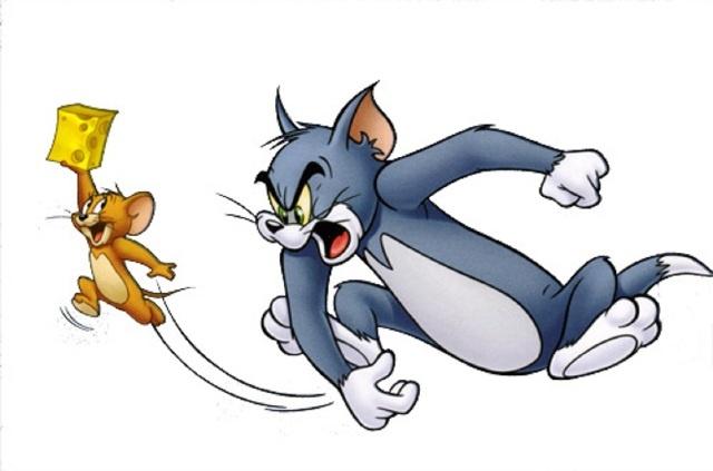 سئو محلی با موش کور